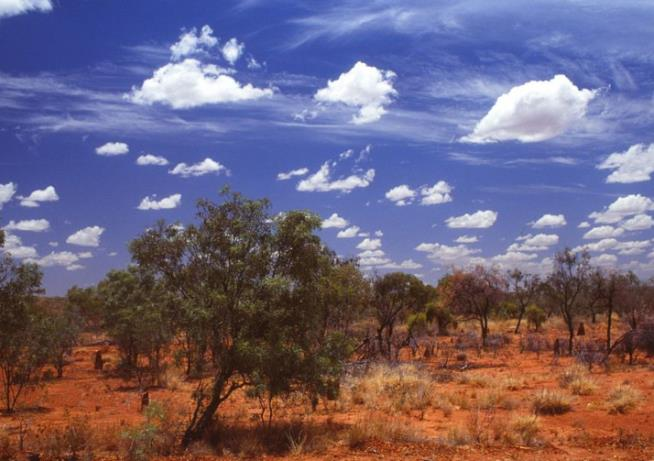 Child missing after three people found dead in outback Australia