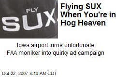 Flying SUX When You're in Hog Heaven
