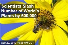 Scientific Study Slashes Number of World's Plants by 600,000