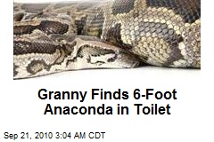 Granny Finds 6-Foot Anaconda in Toilet