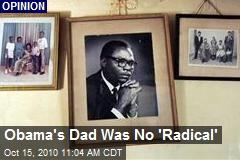 Obama's Dad Was No 'Radical'