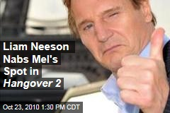 Liam Neeson Nabs Mel's Spot in Hangover 2