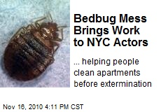 Bedbug Mess Brings Work to NYC Actors
