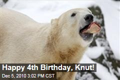 Happy 4th Birthday, Knut!