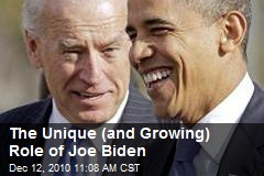 The Unique (and Growing) Role of Joe Biden