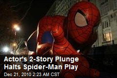 2-Story Plunge Halts Spiderman Play
