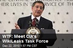 WTF: Meet CIA's WikiLeaks Task Force