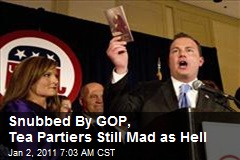 Snubbed By GOP, Tea Partiers Still Mad as Hell
