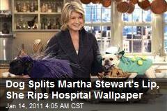Dog Splits Martha Stewart's Lip, She Rips Hospital Wallpaper