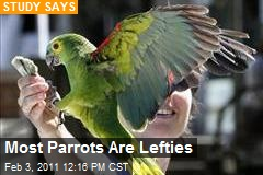 Most Parrots Are Lefties