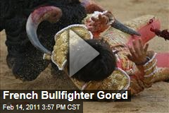 French Bullfighter Gored