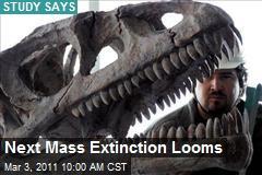 Next Mass Extinction Looms