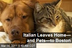 Italian Leaves Home— and Pets—to Boston