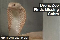 Bronx Zoo Cobra Reportedly Found