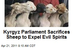 Kyrgyz Parliament Sacrifices Sheep to Expel Evil Spirits