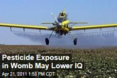 Pesticide Exposure in the Womb Linked to Lower IQs in Children