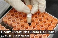 Court Overturns Stem Cell Ban
