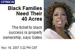 Black Families Need Their 40 Acres