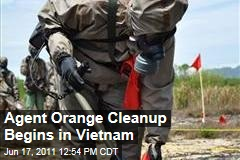 Agent Orange Health Risks: US and Vietnam Work to Clean Up Chemical Damage