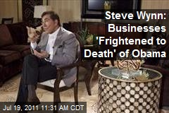 Steve Wynn: Business Afraid of Obama