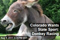 Could Pack Burro Racing Be Colorado's State Sport?