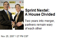 Sprint Nextel: A House Divided