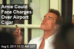 Arnold Schwarzenegger Could Face Charges for Allegedly Smoking a Cigar in Austrian Airport