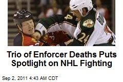 Trio of Enforcer Deaths Puts Spotlight on NHL Fighting