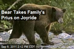 Bear Takes Family's Prius on Joyride