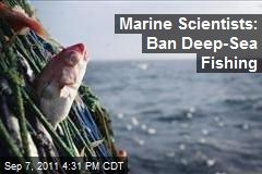 Marine Scientists: Ban Deep-Sea Fishing
