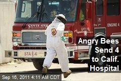 Angry Bees Send 4 to Calif. Hospital