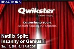 Netflix-Qwikster Split: Insanity or Genius?