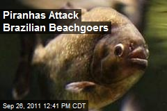 Piranhas Attack Brazilian Beachgoers