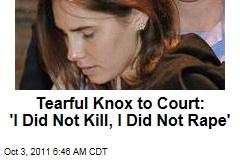 Tearful Amanda Knox Addresses Italian Court: I Am Innocent of Meredith Kercher's Murder