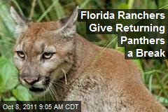 Florida Ranchers Give Returning Panthers a Break