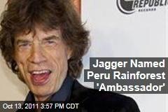 Rolling Stone Mick Jagger Dubbed Peru Rainforest 'Ambassador'
