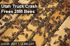 Utah Truck Crash Frees 25M Bees