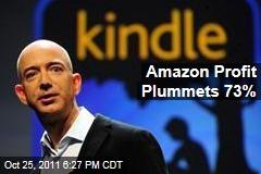 Amazon's Profits Plunge 73% in Third Quarter