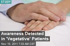 Awareness Detected in 'Vegetative' Patients