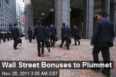 Wall Street Bonuses to Plunge