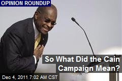 So What Did the Cain Campaign Mean?