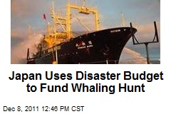 Japan Uses Disaster Budget to Fund Whaling Hunt