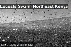 Locusts Swarm Northeast Kenya