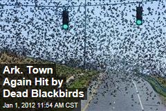 Dead Blackbirds Again Rain Down on Arkansas Town