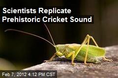 Scientists Replicate Prehistoric Cricket Sound