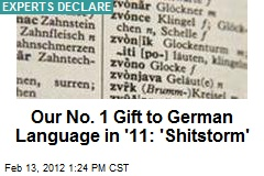 Our No. 1 Gift to German Language in '11: 'Shitstorm'