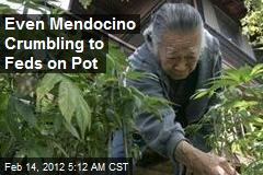 Even Mendocino Crumbling to Feds on Pot