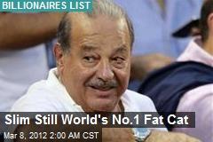 Slim Still World's No.1 Fat Cat