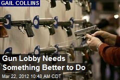 Gun Lobby Needs Something Better to Do