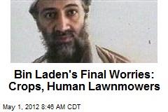 Bin Laden's Final Worries: Crops, Human Lawnmowers